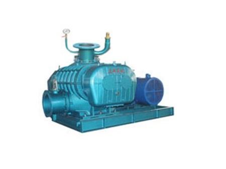 罗茨真空泵OSR-100V